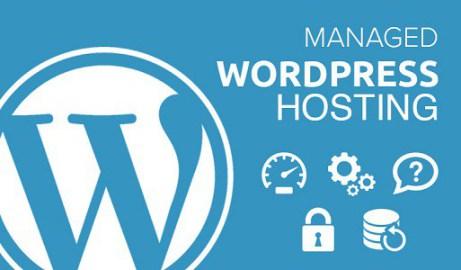 How to choose the best WordPress hosting plan